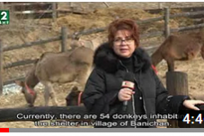 The Donkey Valley in Banichan, Bulgaria